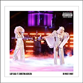 Do What U Want (Ft. Christina Aguilera) [Explicit]
