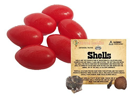 silly-putty-gift-set-6-pack-original-bundle-w-universal-truth-shells-by-universal-specialties