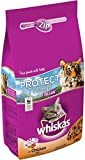 Whiskas Dry Adult Dental Protection Plus with Chicken (2Kg)