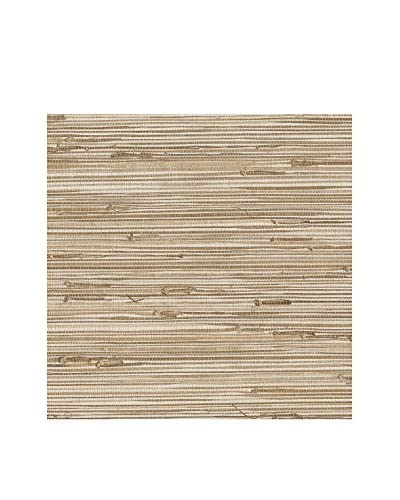 Brewster Ting Taupe Grasscloth Peelable Wallpaper, Mixed Color