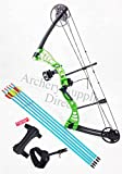 ASD Green Monster Compound Archery Bow Set Package 1 with Sight & Arrows