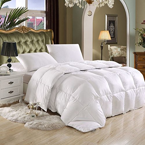 SUPER LUXURIOUS FULL / QUEEN SIZE Goose Down Alternative Comforter,600 Thread Count100% Egyptian Cotton Cover, 750 Fill Power, 80 Oz Fill Weight,Solid White Color (Queen Size Comforters And Quilts compare prices)