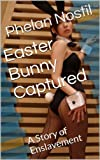 img - for Easter Bunny Captured: A Story of Enslavement (The Holiday Avatars Series) book / textbook / text book