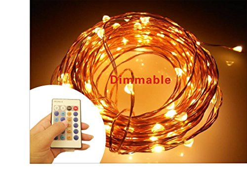 Pretty Indoor String Lights : Pretty for Lifestyle Dimmable Fairy Led String Lights with Remote Control (cooper wire) (Warm ...