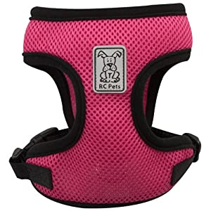 RC Pet Products Cirque Soft Walking Dog Harness, Large, Raspberry