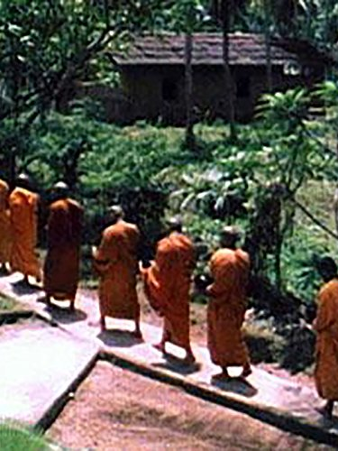 Buddhism: Path to Enlightenment (Institutional Use and Public Performance Rights)