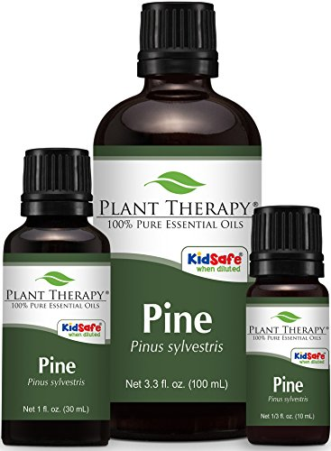 Pine-Essential-Oil-100-Pure-Undiluted-Therapeutic-Grade