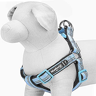 Blueberry Pet Step-in Harnesses 3M Reflective No Pull Neoprene Padded Dog Harness