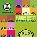 Meet Mameshiba!