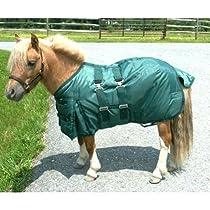 Intrepid International Miniature Horse Turnout Blanket, 45-Inch, Hunter Green