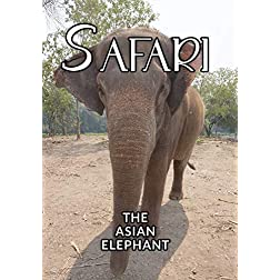 Safari The Asian Elephant