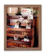 Kitty Cat Kittens Playing Kids Room Animal Home Decor Wall Picture Oak Framed Art Print