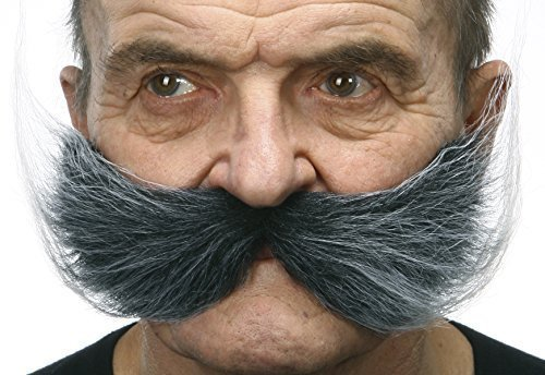 Fisherman's salt and pepper moustache