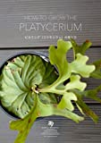 HOW TO GROW THE PLATYCERIUM ビカクシダ(コウモリラン)の育て方 (bales.books)