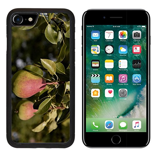 Luxlady Premium Apple iPhone 7 iPhone7 Aluminum Backplate Bumper Snap Case Tomatoes Platter Garden Image 409402 (Pome Tomatoes compare prices)