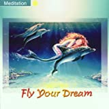 echange, troc  - Musik zur Entspannung - Fly Your Dream