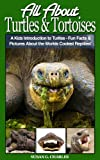 Turtles: All About Turtles and Tortoises, A Kids Introduction to Turtles - Fun Facts & Pictures About the Worlds Coolest Reptiles!
