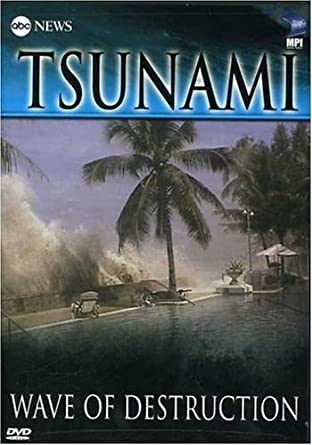 tsunami thailand 2004 news article