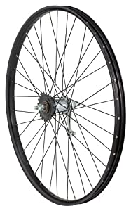Avenir Joytec/Weinmann AMUZ 36H Nutted Rear Wheel with 5-7 Speed Freewheel Hub (Black, 26-Inch x 32mm)