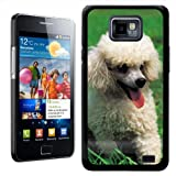 Fancy A Snuggle White Poodle Puppy Design Hard Case Clip On Back Cover for Samsung Galaxy S2 i9100