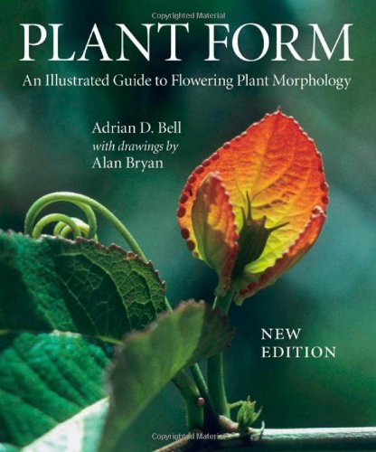 Plant Form An Illustrated Guide to Flowering Plant Morphology088192928X