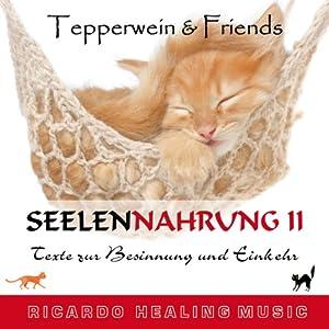 Tepperwein & Friends: Texte zur Besinnung und Einkehr (Seelennahrung 2) Hörbuch