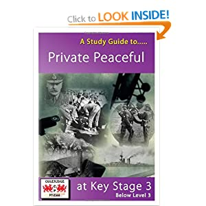 Private Peaceful Study Guide from LitCharts | The creators ...