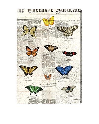 Oliver Gal 'Butterflies' Canvas Art