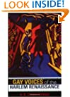 Gay Voices of the Harlem Renaissance (Blacks in the Diaspora)