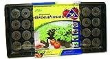 Jiffy 5089 Tomato Starter Greenhouse 36-Plant Starter Kit