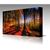 SUNSETS: Enchanted Forest Red, LARGE 32 inches x 20 inches Gallery Framed Canvas