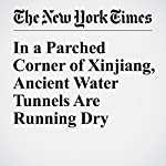 In a Parched Corner of Xinjiang, Ancient Water Tunnels Are Running Dry | Andrew Jacobs