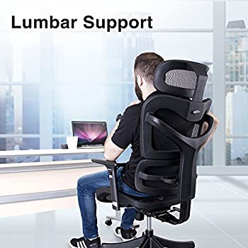 Ergonomic Mesh Office Chair - SIEGES Adjustable Headrest, 3D Flip-up Arms, Back Lumbar Support , High Back Computer Desk Task Executive Chair, Black