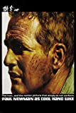 CLASSIC cool hand LUKE movie POSTER paul NEWMAN NONCONFORMIST tale 24X36 (reproduction, not an original)