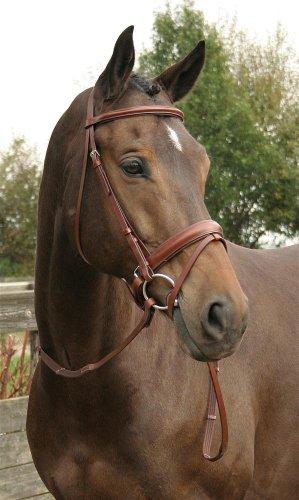 Harry's Horse Schwedische Trense Luxe braun Kaltblut