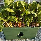 Customer Reviews Garden Patch Gp01gr 06 Grow Box