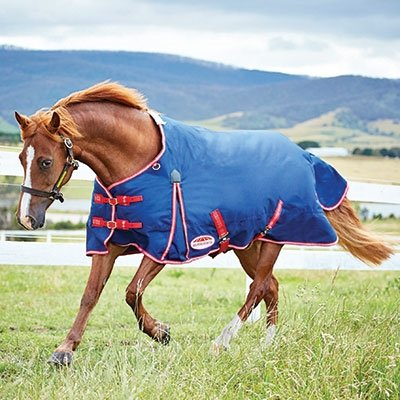 wb-original-1200-standard-neck-lite-pony-60-navy