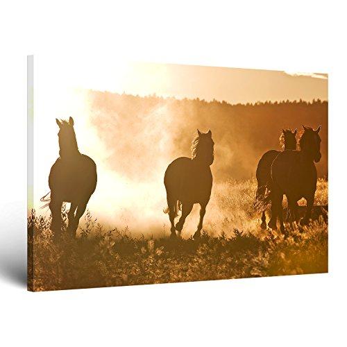 ge bildet leinwandbild mit neuer ffnungsrabatt horses at dawn natur tierbilder auf leinwand. Black Bedroom Furniture Sets. Home Design Ideas