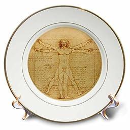 InspirationzStore Vintage Art - Vitruvian man by Leonardo da Vinci 1490 - fine anatomical art - human anatomy pen and ink drawing - 8 inch Porcelain Plate (cp_155633_1)