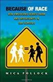 img - for Because of Race: How Americans Debate Harm and Opportunity in Our Schools by Mica Pollock (2008-08-10) book / textbook / text book