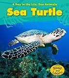 Sea Turtle (A Day in the Life: Sea Animals)