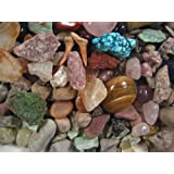 ROCK & MINERAL COLLECTION Kit with a Meteorite Fragment This is an Activity KIt with Over 150+PCS Comes with Identification Sheet EDUCATIONAL DISCOVERY TREASURE KIT SORT, FIND, IDENTIFY