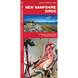 New Hampshire Birds: A Folding Pocket Guide to Familiar Species (Pocket Naturalist Guide Series)