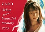 ZARD What a beautiful memory 2009 パンフレット