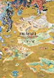 FINAL FANTASY XI 10th ANNIVERSARY OFFICIAL MEMORIAL BOOK -A Decade of Vana&#39;diel-