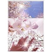 グランイメージ A511 サンシャインサクラ(ロイヤリティフリー写真素材集)