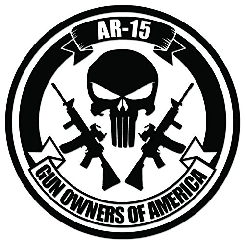 Gun Owners America AR-15 Punisher Skull Vinyl Decal Sticker For Vehicle Car Truck Window Bumper Wall Decor - [6 inch/15 cm Tall] - Gloss WHITE Color (Punisher Truck Window Decal compare prices)