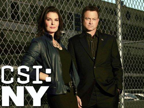CSI: NY - Season 8 - IMDb