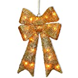 National Tree Gold Sisal Bow with 20 Clear Lights, 23.5-Inch