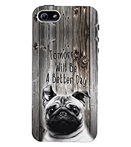 PrintVisa Quotes & Messages Attitude 3D Hard Polycarbonate Designer Back Case Cover for Apple iPhone 5 :: 5S